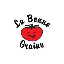 Laitue Val d'Orge