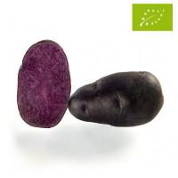 Pomme de terre Gaïane Bio